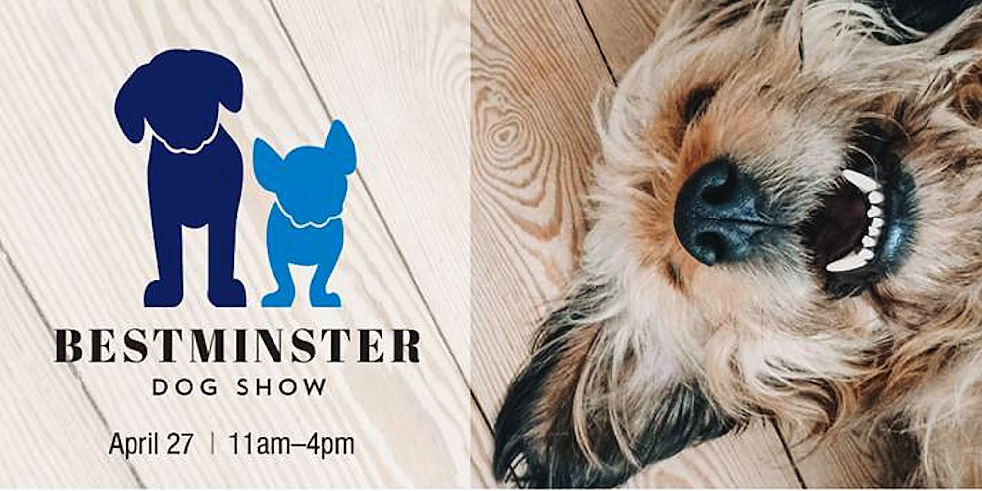 Bestminster makes its dog show debut
